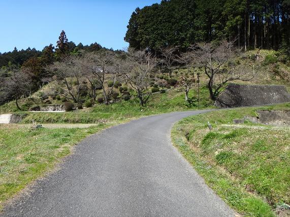 10 ショーカットして県道へ.JPG
