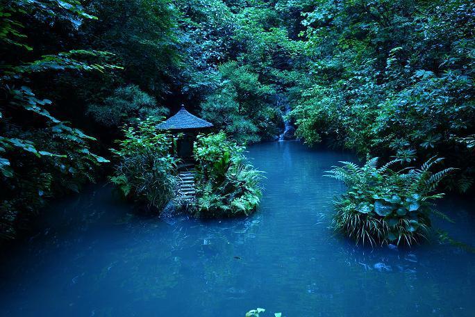 114 庭園の池.JPG