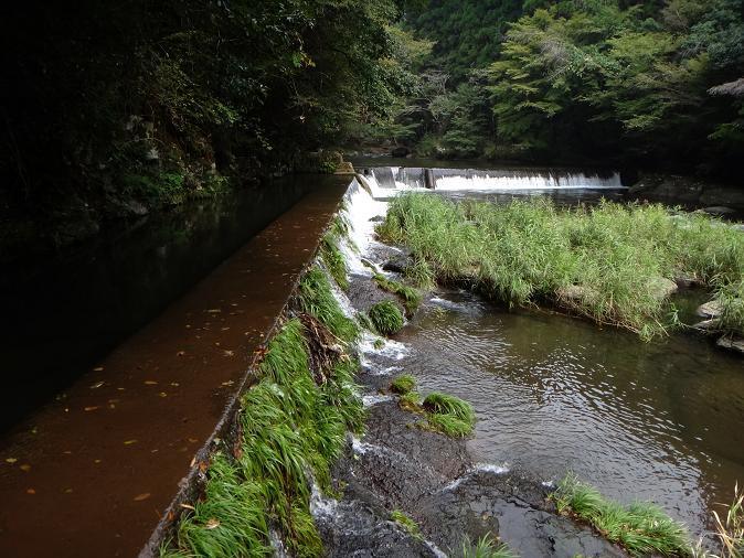 11 取水用の堰.JPG