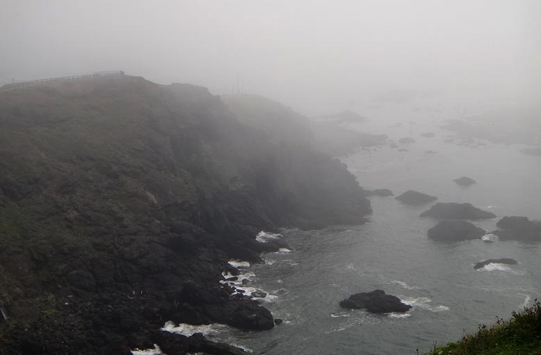 12 アザラシ探してるのだけどこの霧じゃあねぇ.JPG