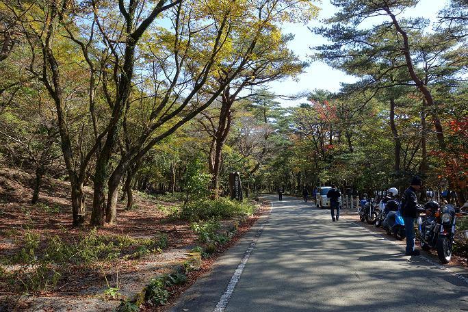 12 キリシマの林道.JPG