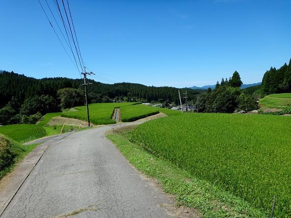 12 農村に出ました.JPG
