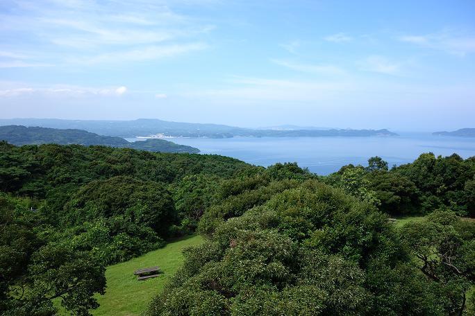 14 大崎公園の展望台から.JPG
