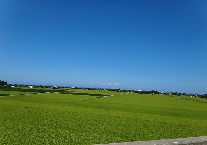 14 富山の田んぼは綺麗.JPG