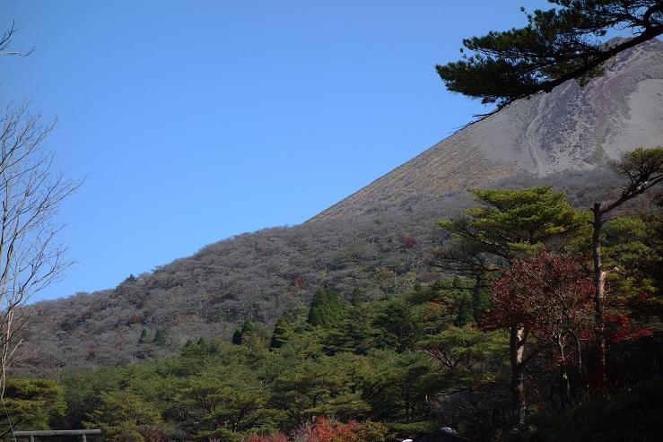 14 火山灰で森が枯れました.jpg