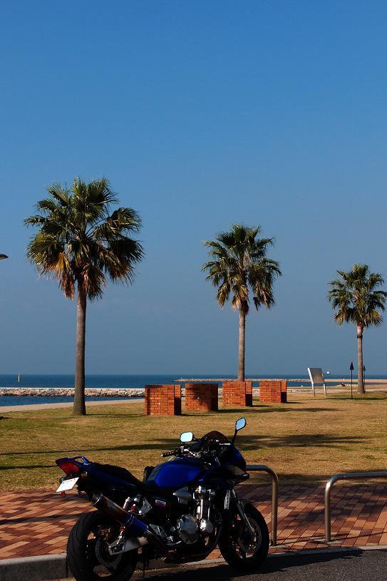 14 焼野海岸です.JPG