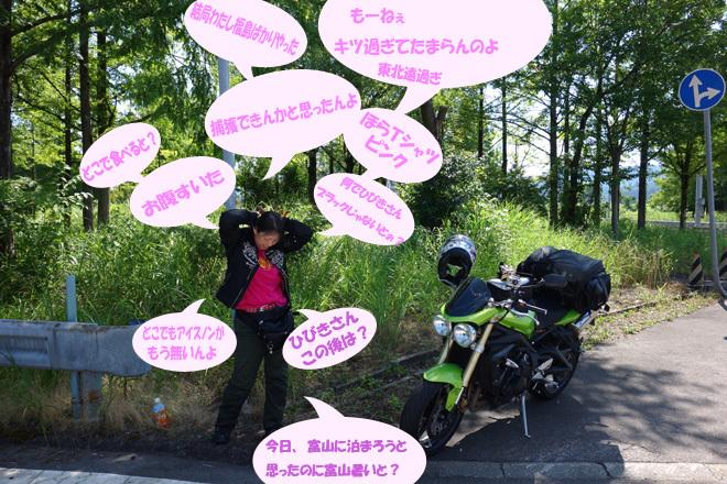 16 ちゃつ登場.jpg