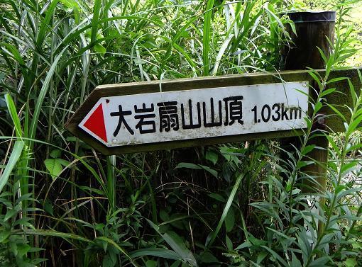 18 山の上まで行けるのだろうか?.JPG