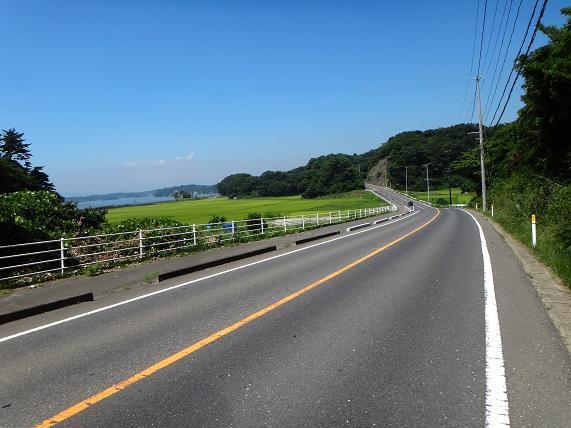 18 超ローカルな道.JPG