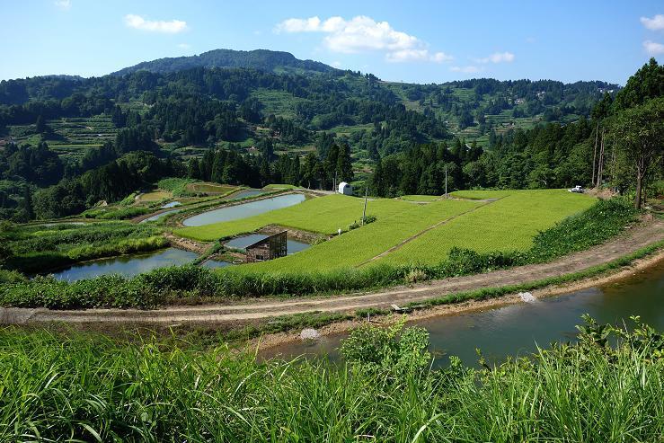 19 山古志村の風景.JPG