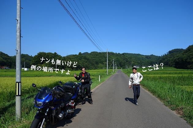 19 田んぼの道.JPG
