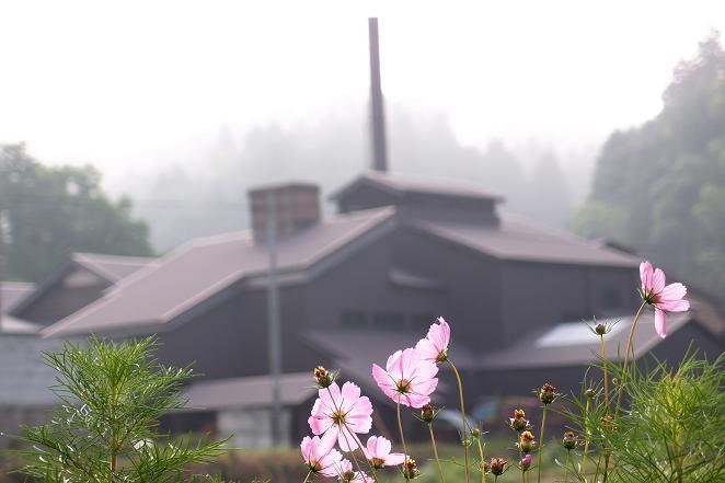 1 農村に工場.JPG
