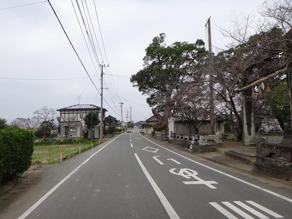 20 田舎の好きな風景.JPG