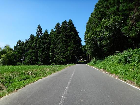 22 寺ばかりの登山道を登ります.JPG