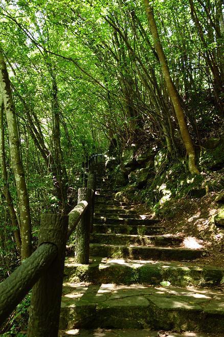 22 楽しい階段.JPG
