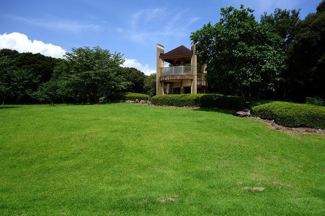 23 鮮やか過ぎる芝生.JPG