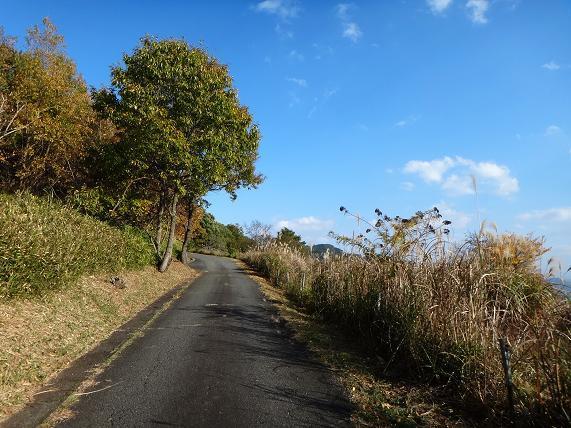 24 けっこう景色の良い林道でした.JPG