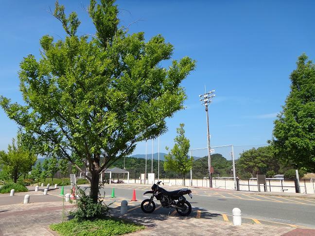 24 運動公園の木陰で休憩.JPG