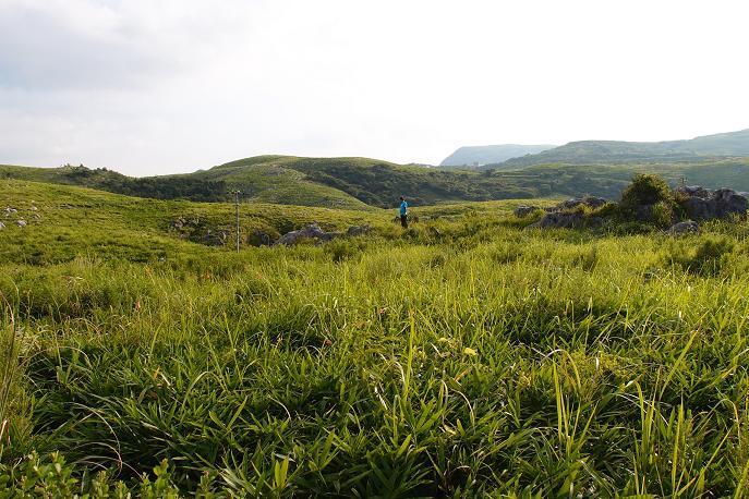 25 草原のパパ.JPG