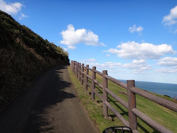 25 長閑な道をカワセミ号と走ります.JPG