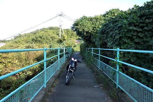 26 ちびっ子バイクの特権.JPG