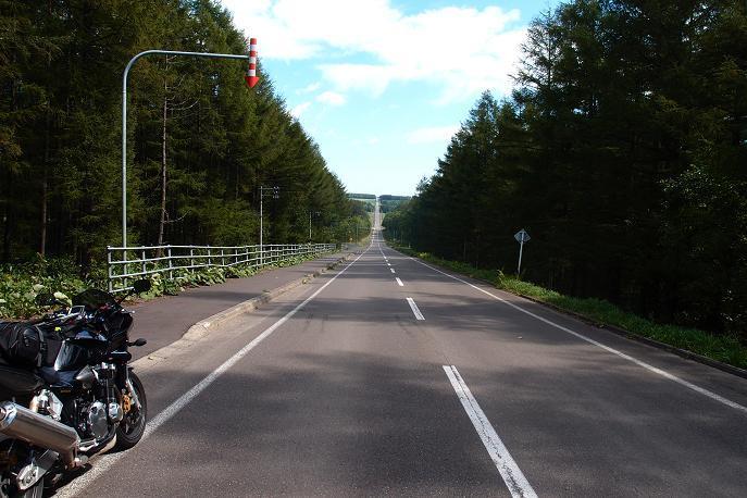 27 定番のジェットコースター道路.JPG
