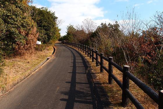 28 公園の遊歩道.JPG