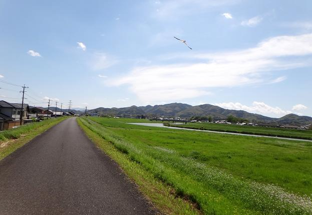 2 犬鳴川.JPG