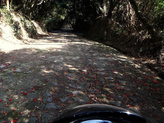 32 いきなり現れた石畳の道.JPG