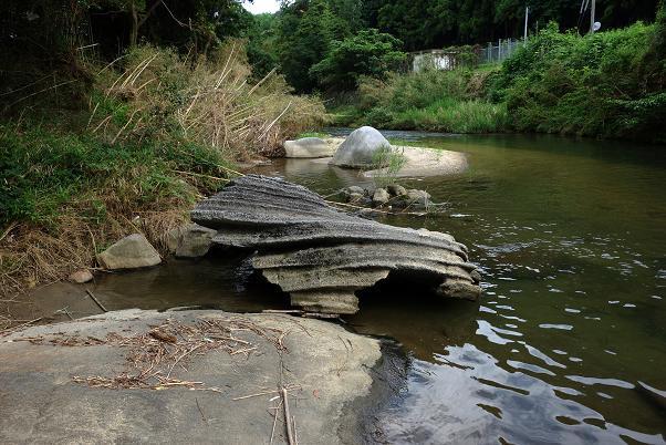 32 久々登場の蛇巻岩.JPG