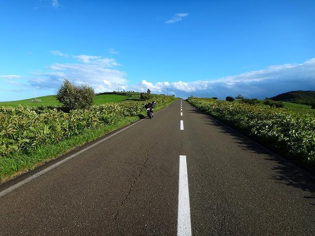33 岬の道.JPG