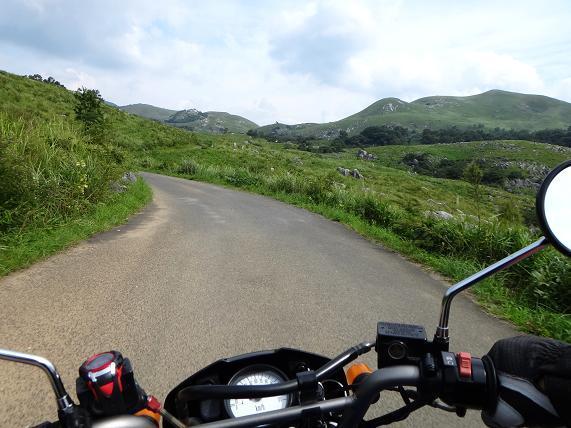 3 野草を探しながら走るにはいいバイクです.JPG