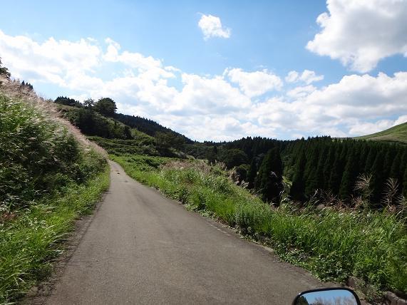 40 荻岳に行くのにこんな道は記憶に無い.JPG