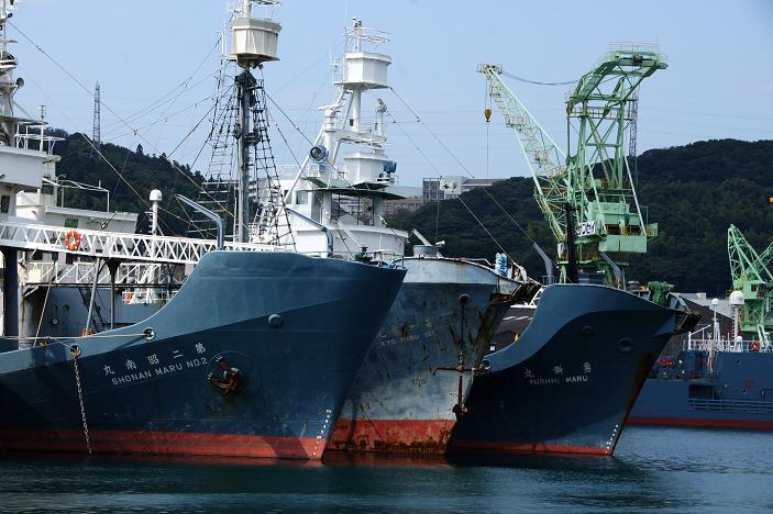 41 三隻とも引退した捕鯨船です.JPG