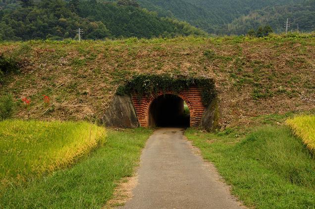 45 可愛いトンネル.JPG