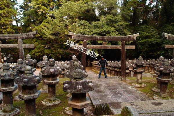 45 秀吉が神社とお寺を分けたんだっけ?.jpg