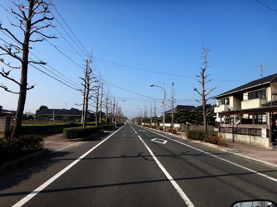4 マイナーな道.JPG
