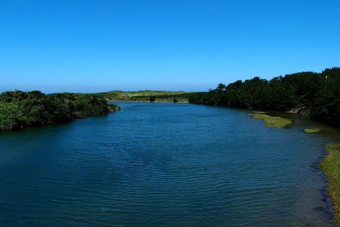 4 南国チックな河口.JPG