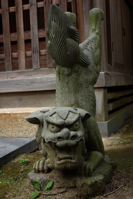 50 器用な狛犬・・・いや狛河童.JPG