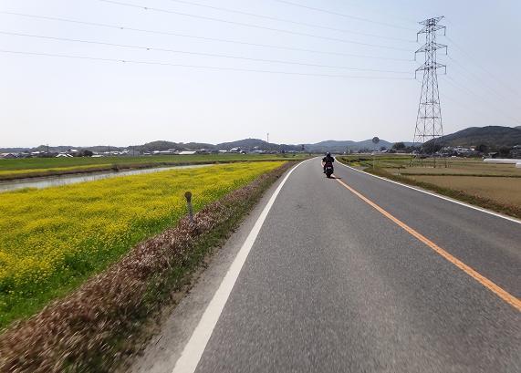 5 犬鳴川です.JPG