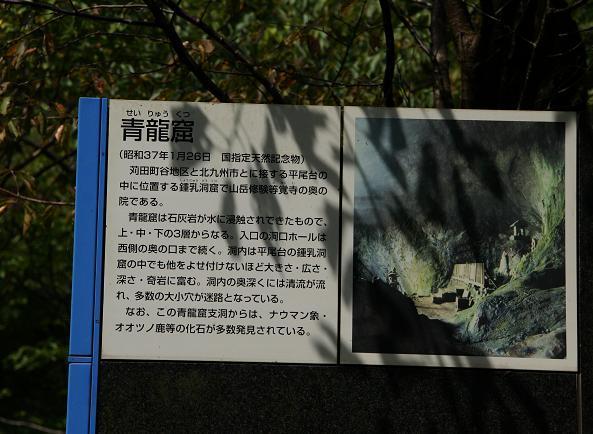 7 何か凄い洞窟っぽいけど怖そう.JPG