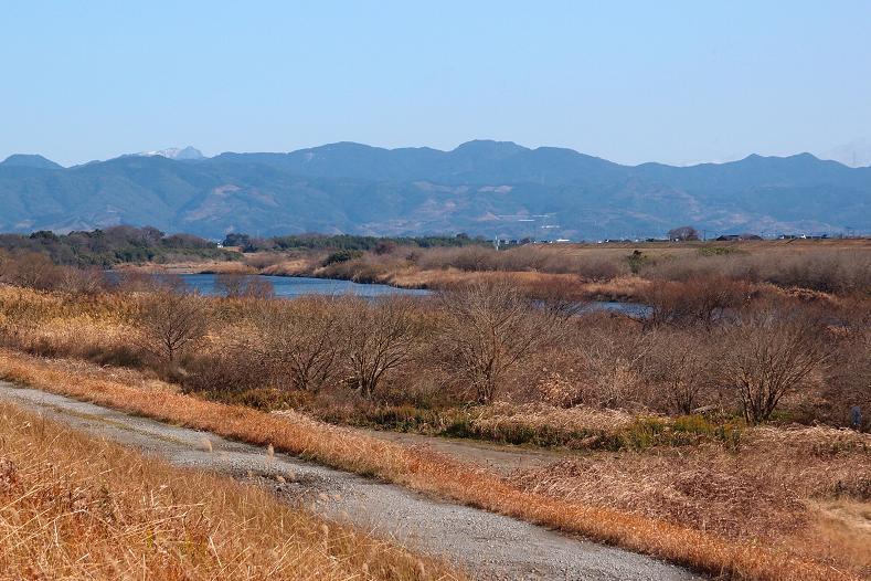 7 自然がいっぱいな風景.JPG