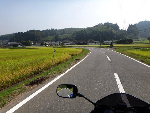 8 明るい農村.JPG