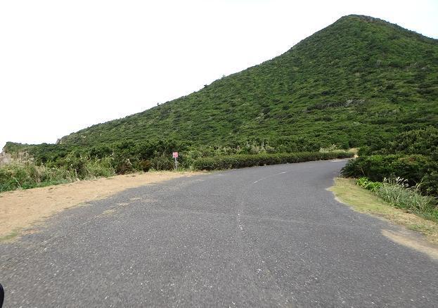 8 生えてる木が独特な山.JPG