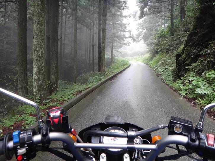 9 いい感じの霧です.JPG