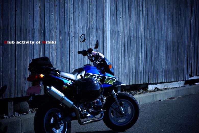 ちびっ子バイクは楽しい.jpg
