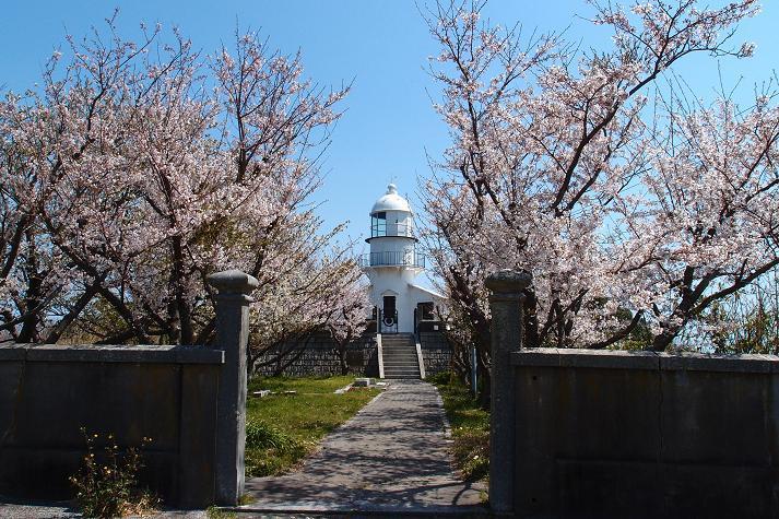 桜の季節に行くとこんな感じ.JPG