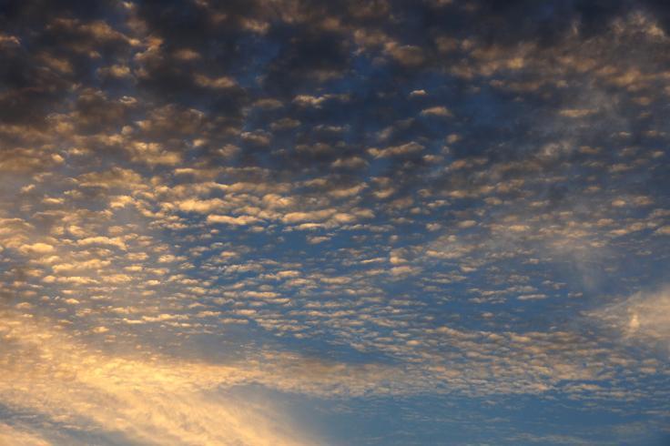 秋の雲.JPG