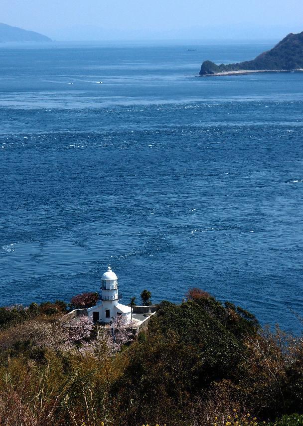 豊予海峡を見つめます.JPG