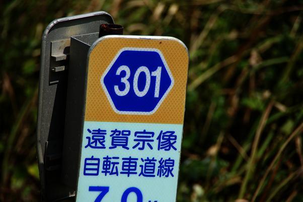 12 県道なんです.JPG